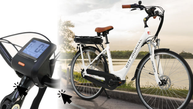 AsVIVA Tiefeinsteiger Hollandrad E-Bike