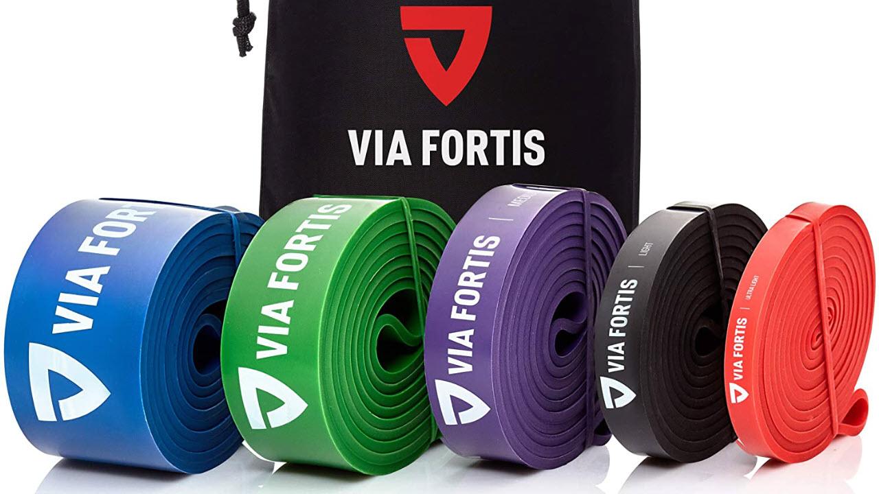 VIA FORTIS Fitnessbänder Widerstandsbänder Set - Deuserband Alternative
